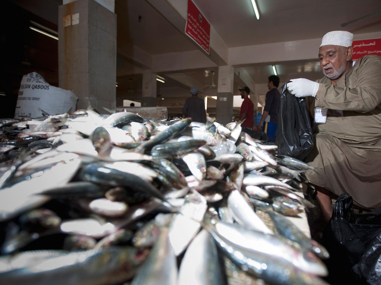 m4336_091210-oman-sail-fish-market-035