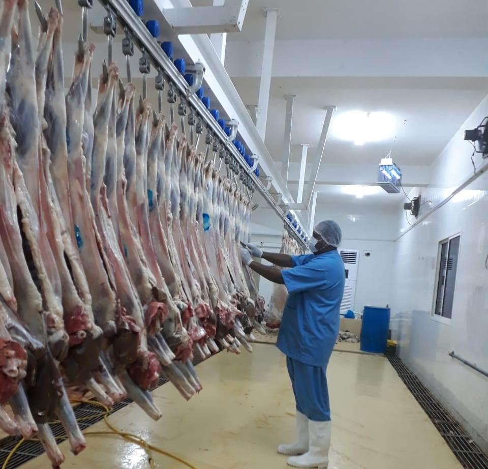 Slaughtering in Slaughterhouses