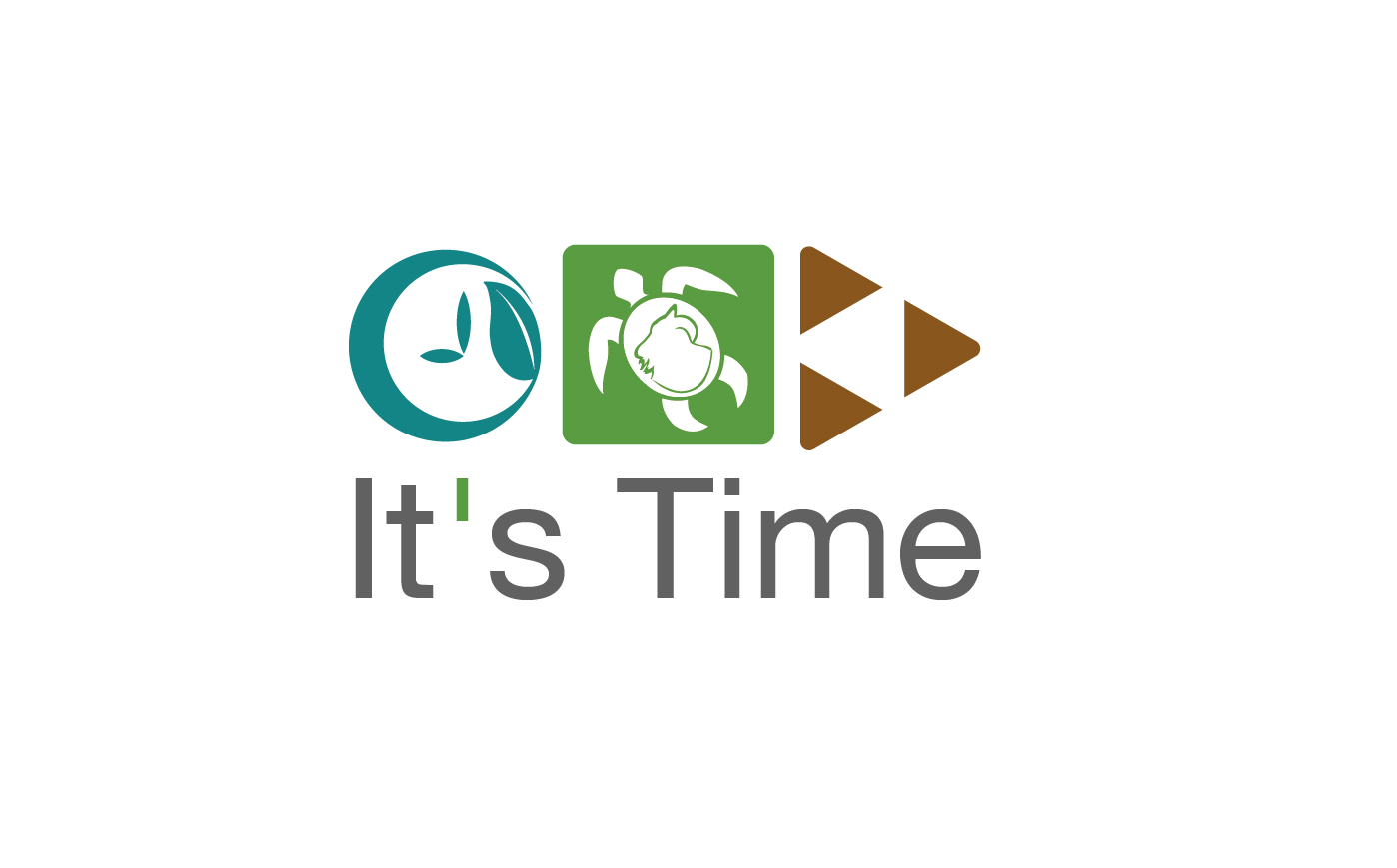 ESO - Its Time Campaign Logo